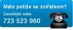 Zavolejte nám 723 523 960
